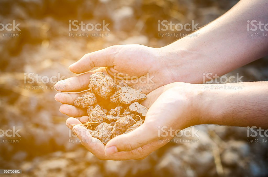 Dry soil in hand stock photo