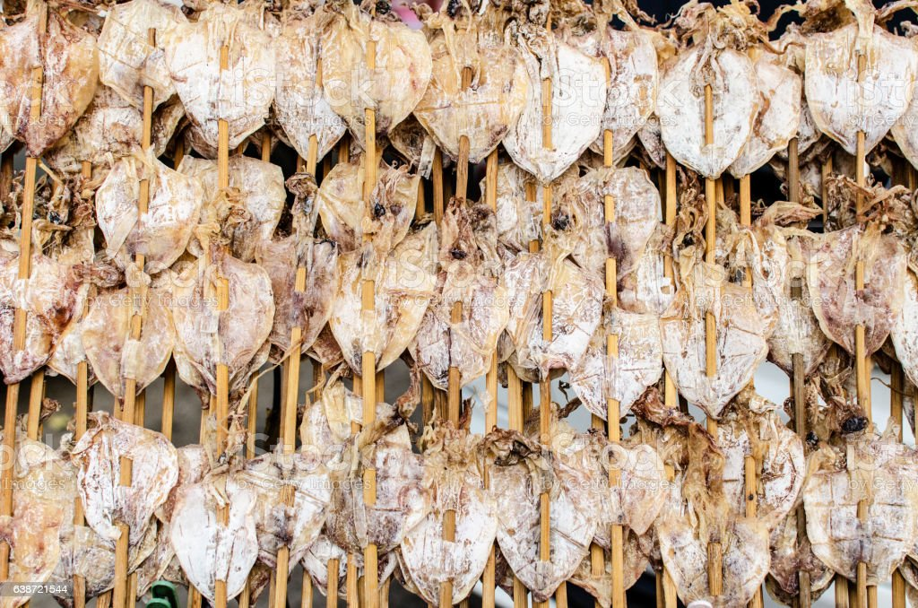 Dry squid in row.Traditional squids drying in Grilled squid stock photo