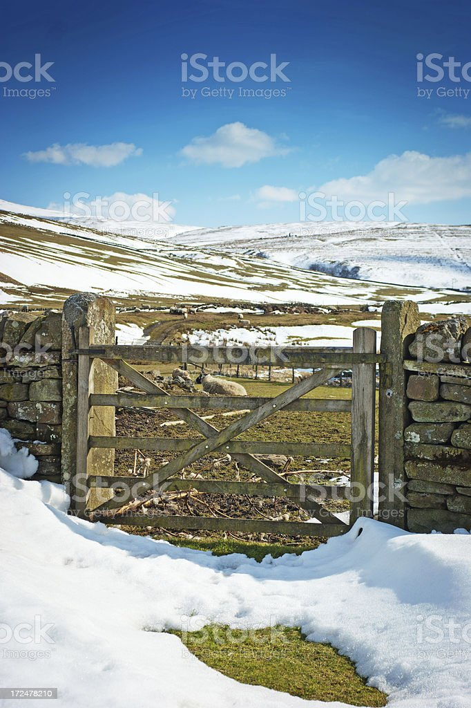 Dry stone wall on a sheep farm royalty-free stock photo