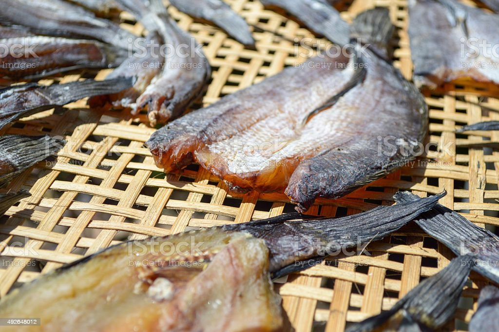 dry striped snakehead fish stock photo
