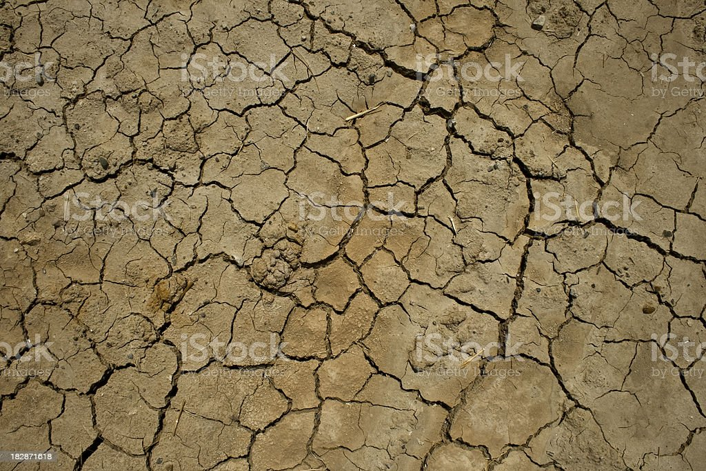 Dry Sun Baked Mud royalty-free stock photo