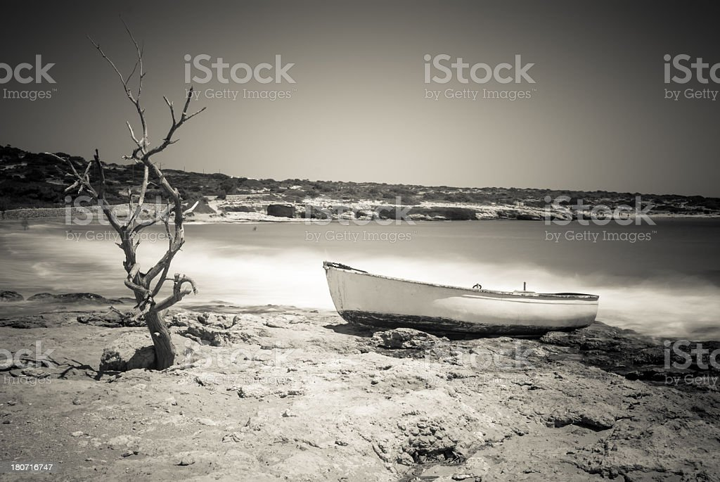 Dry tree and small boat on a great beach, Koufonissi royalty-free stock photo