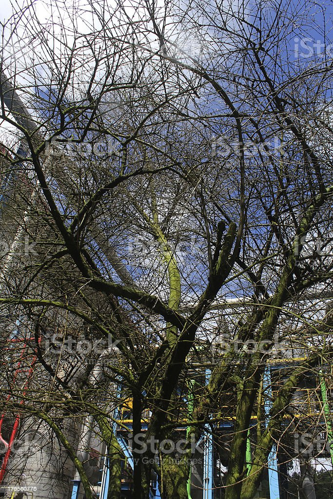 dry twigs royalty-free stock photo