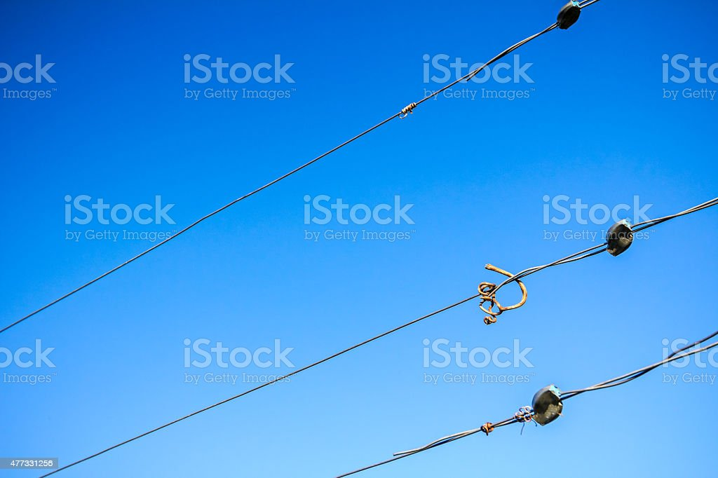 Dry vine tendril on wire stock photo