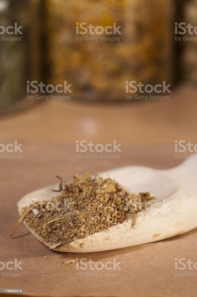 dry wild camomile royalty-free stock photo