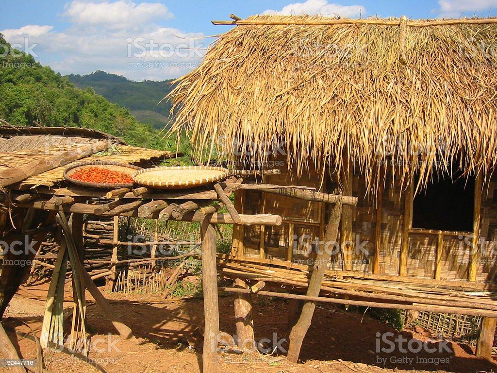 drying chillies native hut laos royalty-free stock photo