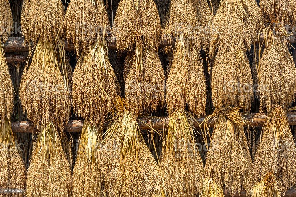 Drying crops in Chengyang Dong village, Sanjiang County - Guangxi stock photo