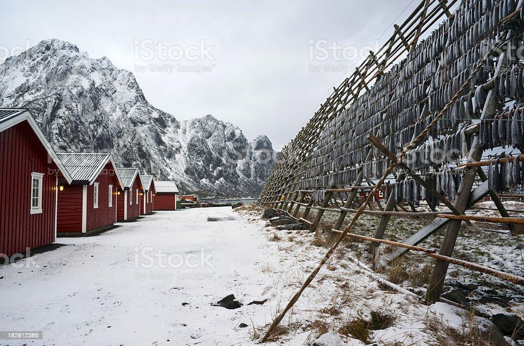 'Drying Fish, Lofoten Islands' stock photo