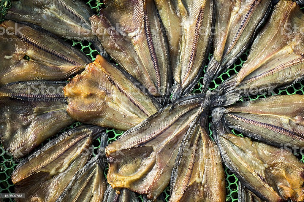 Drying fishes royalty-free stock photo