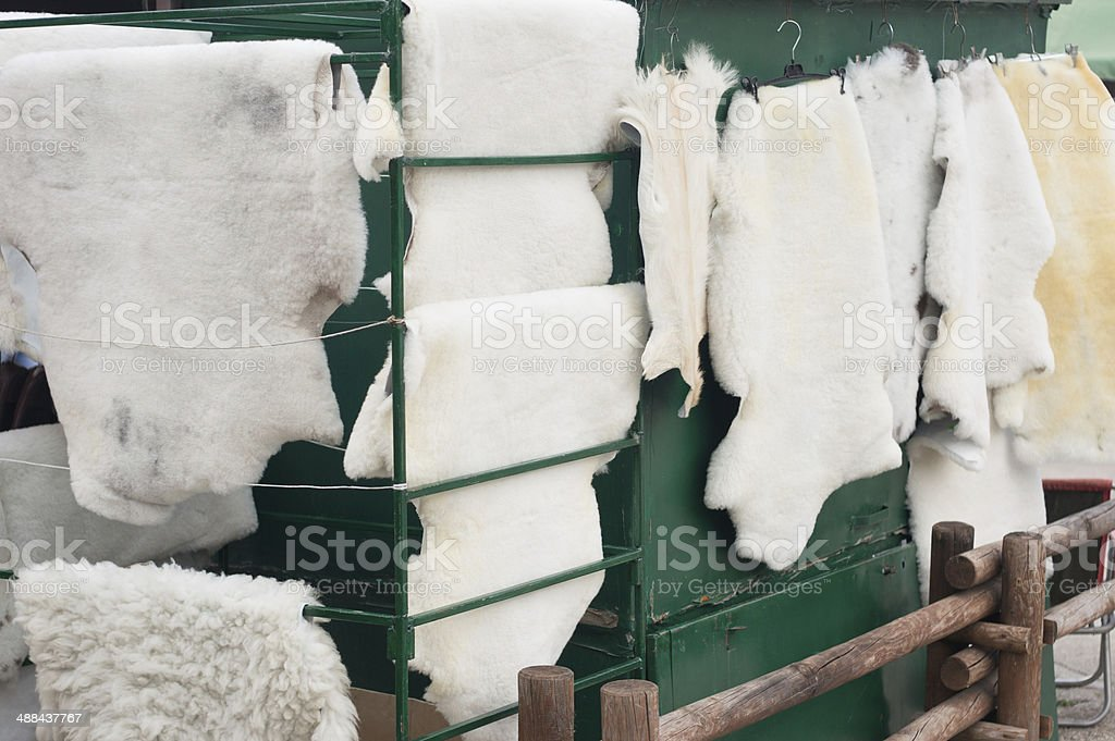 drying of animal fur after skinning stock photo
