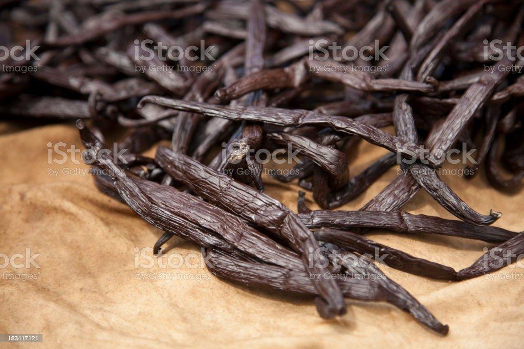 Drying Tahitian Vanilla Beans stock photo