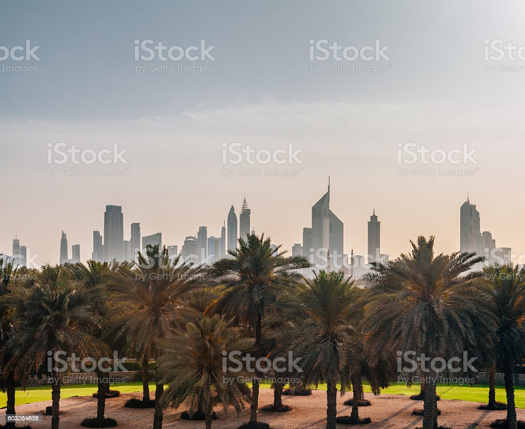 Dubai cityscape with skyscrapers and Palm trees stock photo