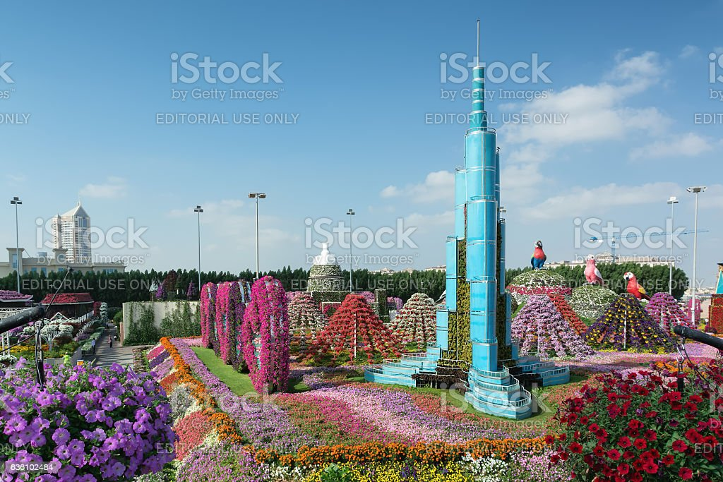Dubai Miracle Garden is the biggest natural flower garden. stock photo