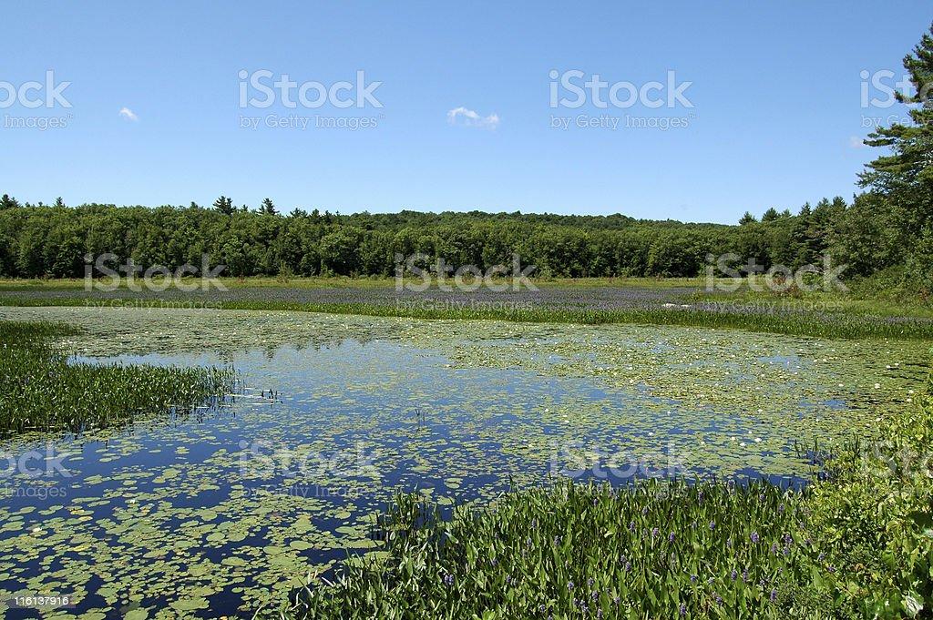 Dublin Pond, New Hampshire stock photo