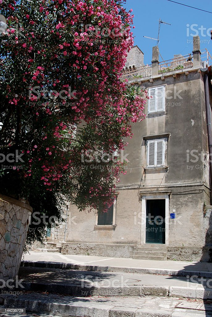 Dubrovnik streets royalty-free stock photo