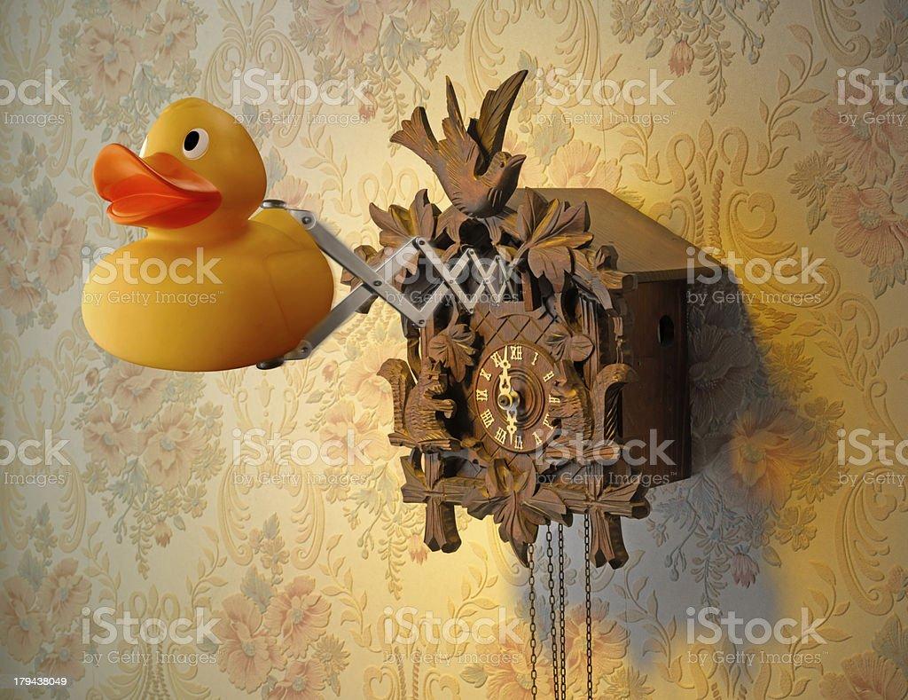 Duck and Cuckoo Clock stock photo