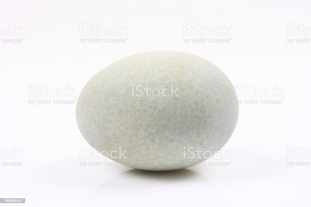 Duck egg on white background stock photo