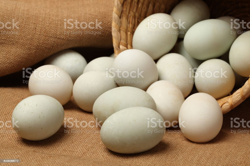 Duck eggs isolated   background. With clipping path stock photo