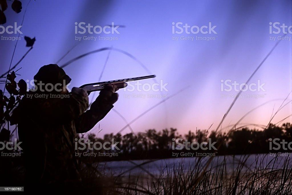 duck hunter at dawn stock photo
