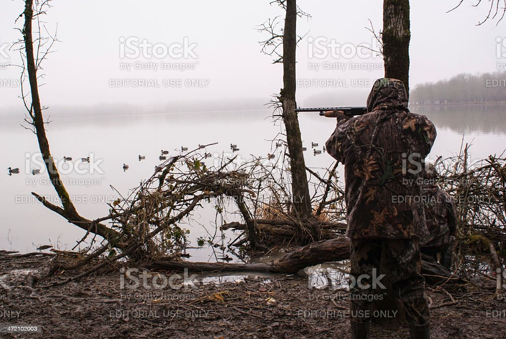 Duck hunting in the fog stock photo