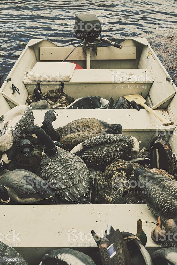 Duck Hunting stock photo
