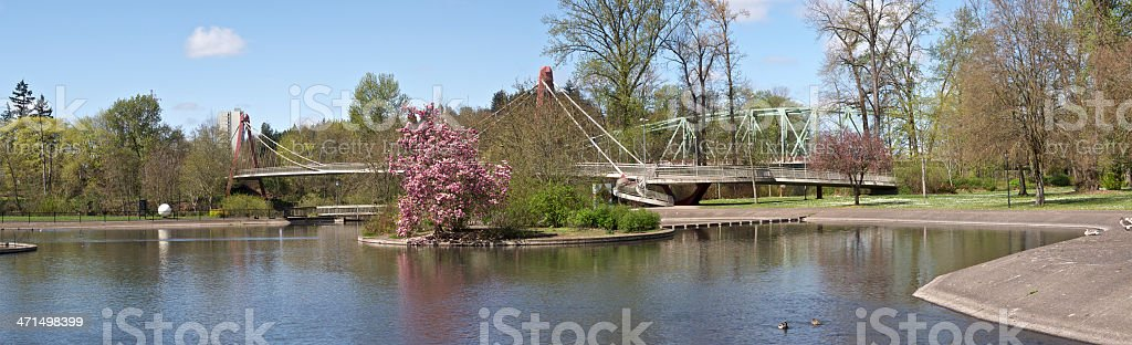 Duck Pond Eugene Oregon Alton Baker Park Peter DeFazio Bridge royalty-free stock photo