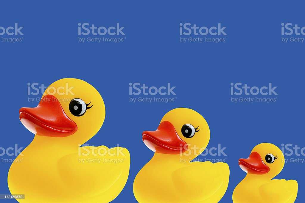 Duckie in Three royalty-free stock photo