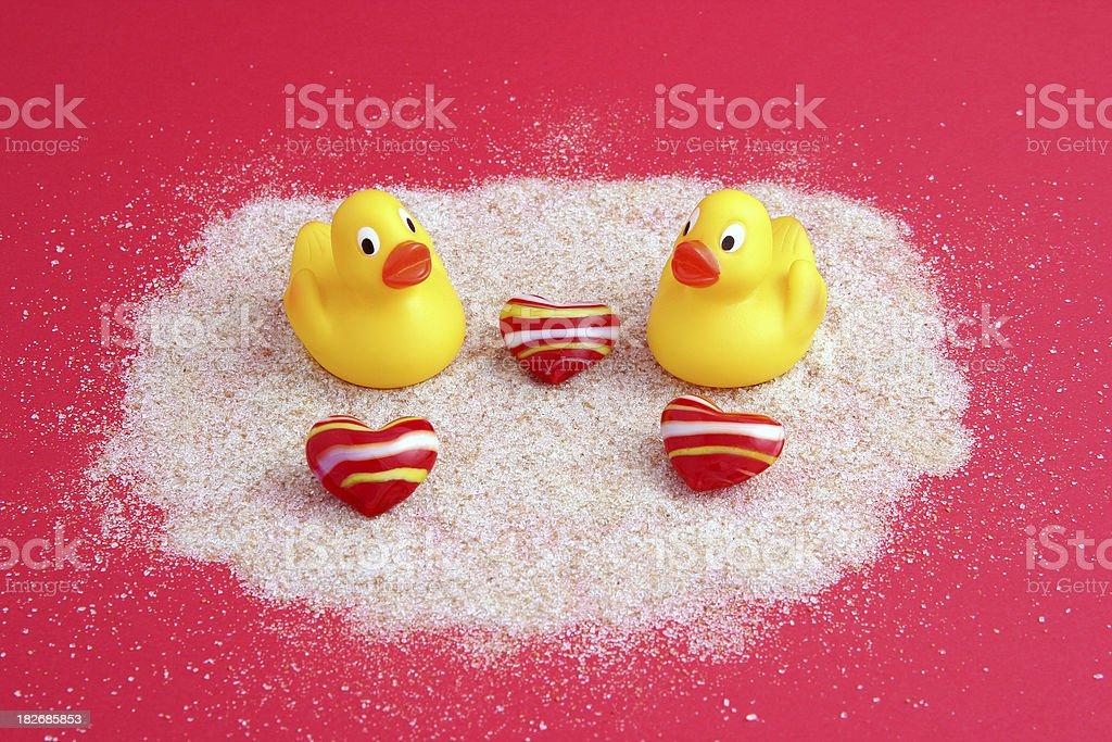 Ducks with hearts royalty-free stock photo