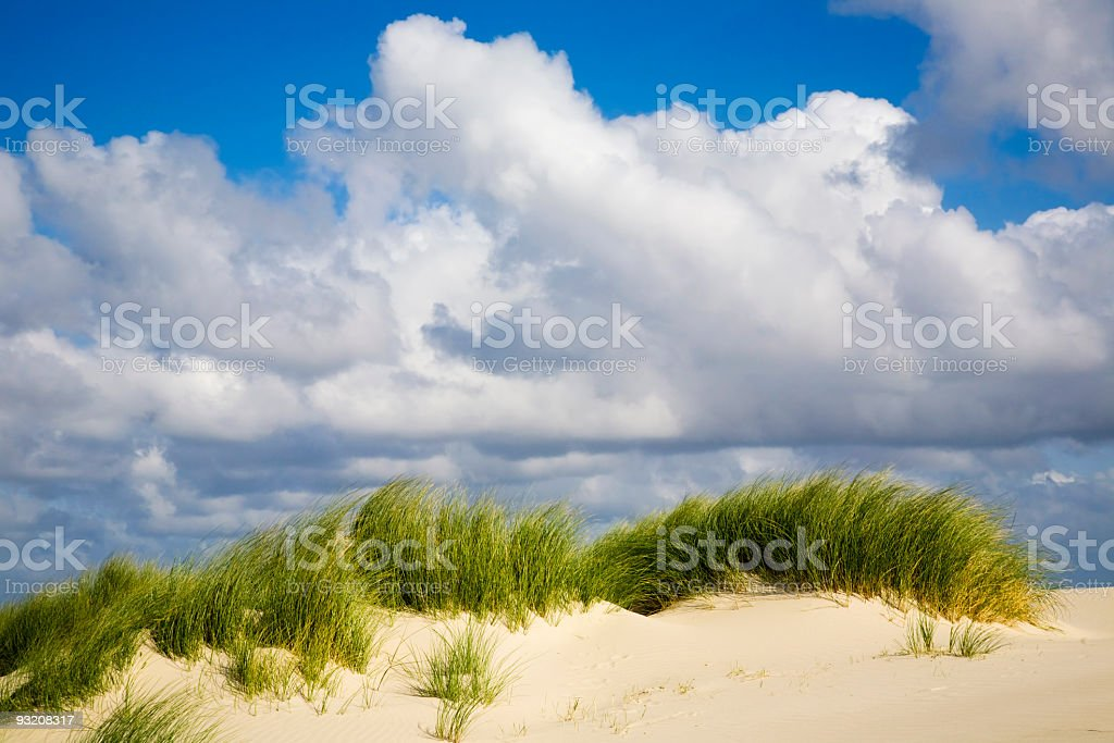 Duenenlandschaft stock photo