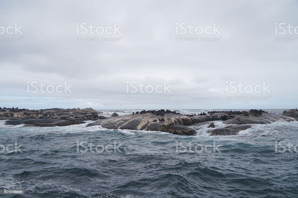 Duiker Island near Hout Bay, Cape Town,South Africa stock photo