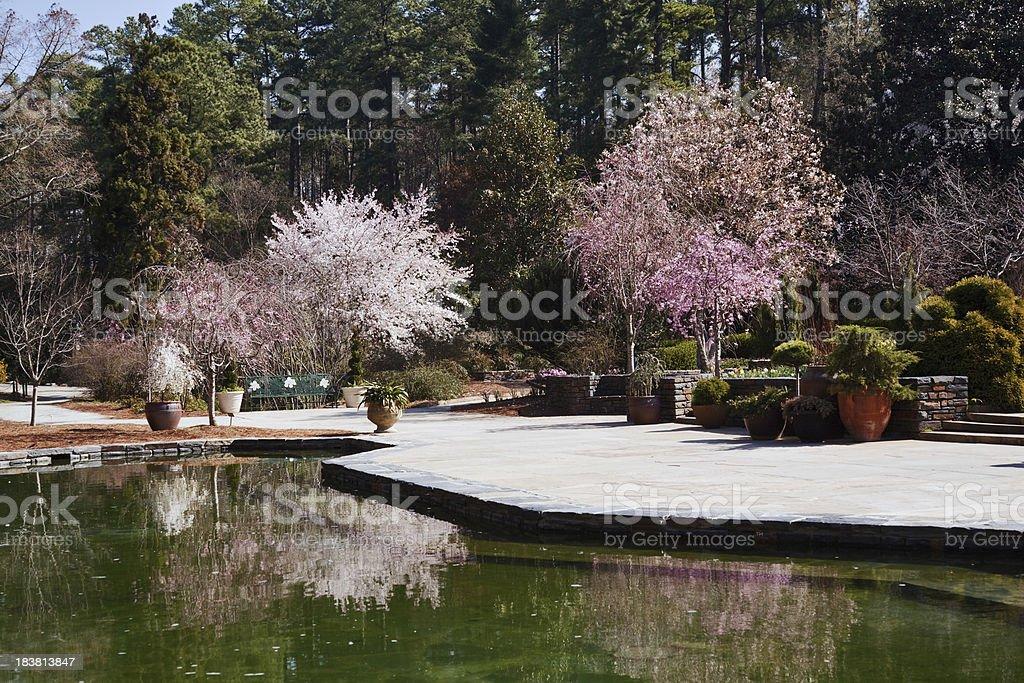 Duke University gardens in spring stock photo