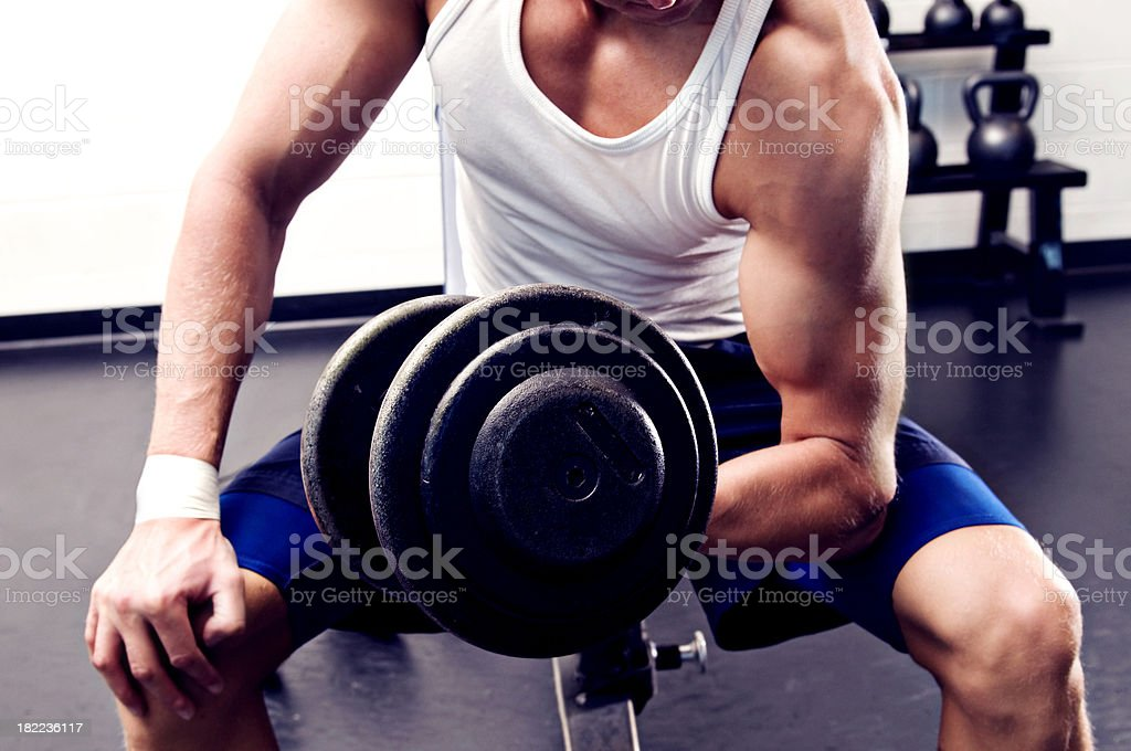 Dumbbell Bicep Curl royalty-free stock photo