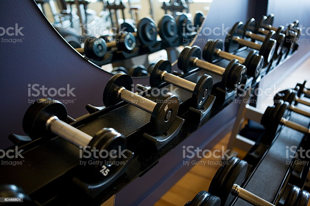 Dumbbells in a row stock photo