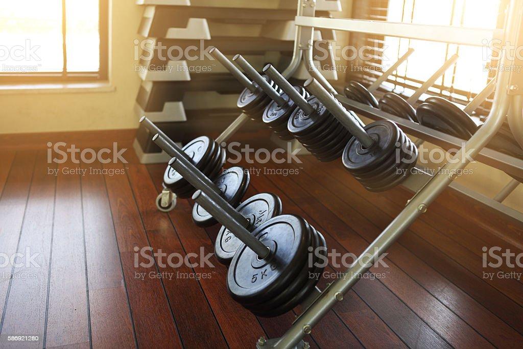 Dumbbells in modern sports club stock photo