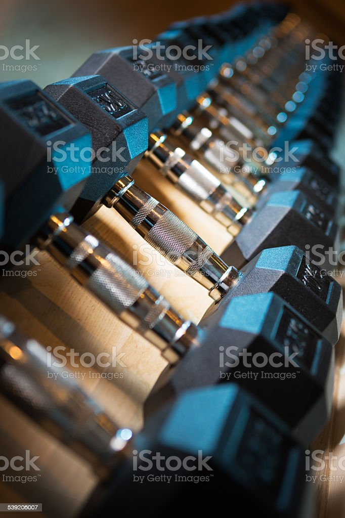 Dumbbells on rack at gym stock photo