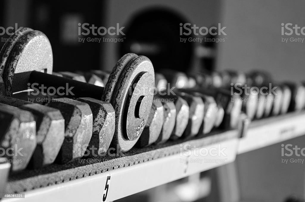 Dumbbells on rack stock photo