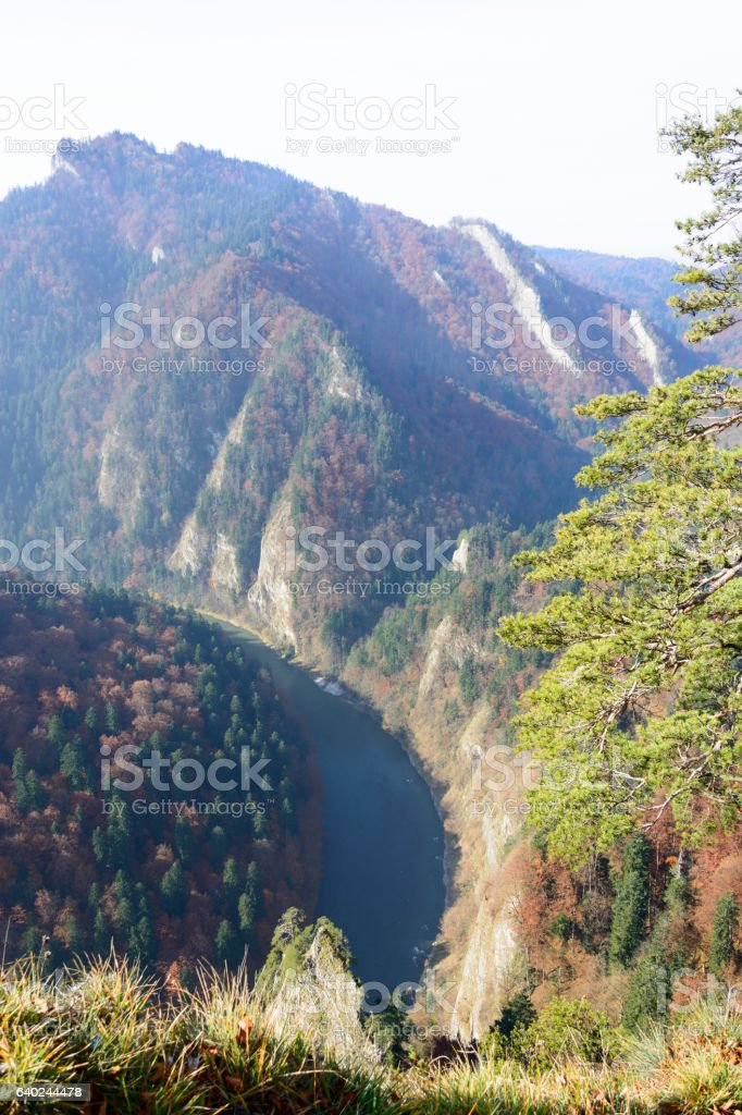 Dunajec river from Sokolica peak stock photo