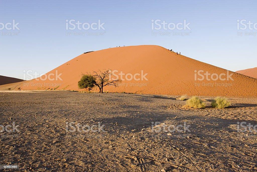 dune 45 stock photo