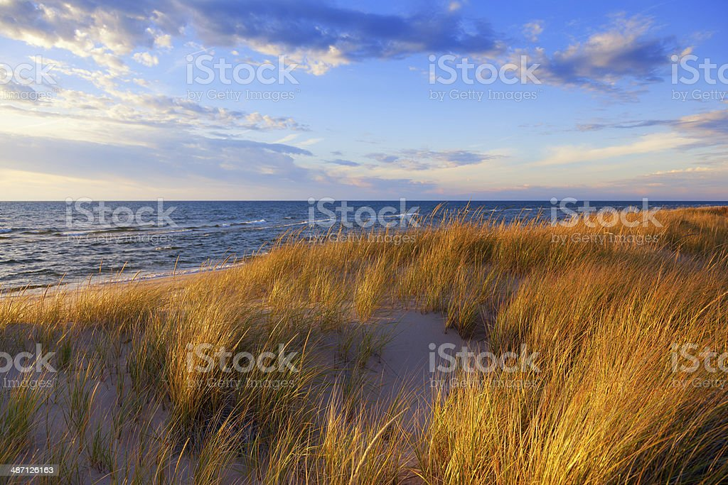 Dune Grass on Lake Michigan stock photo