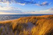 Dune Grass on Lake Michigan