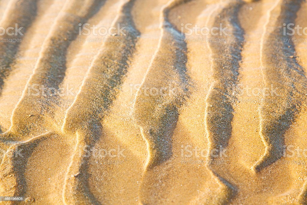 dune   in africa brown t sand beach  atlantic ocean stock photo