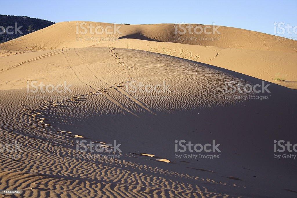 Dune in the desert royalty-free stock photo