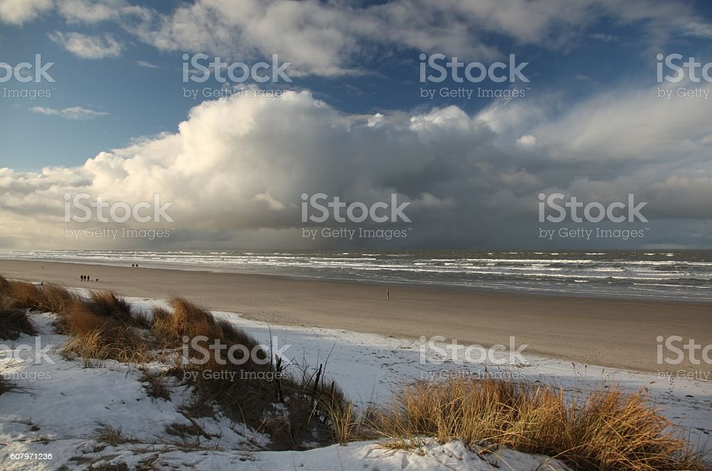 Dune landscape in the winter stock photo
