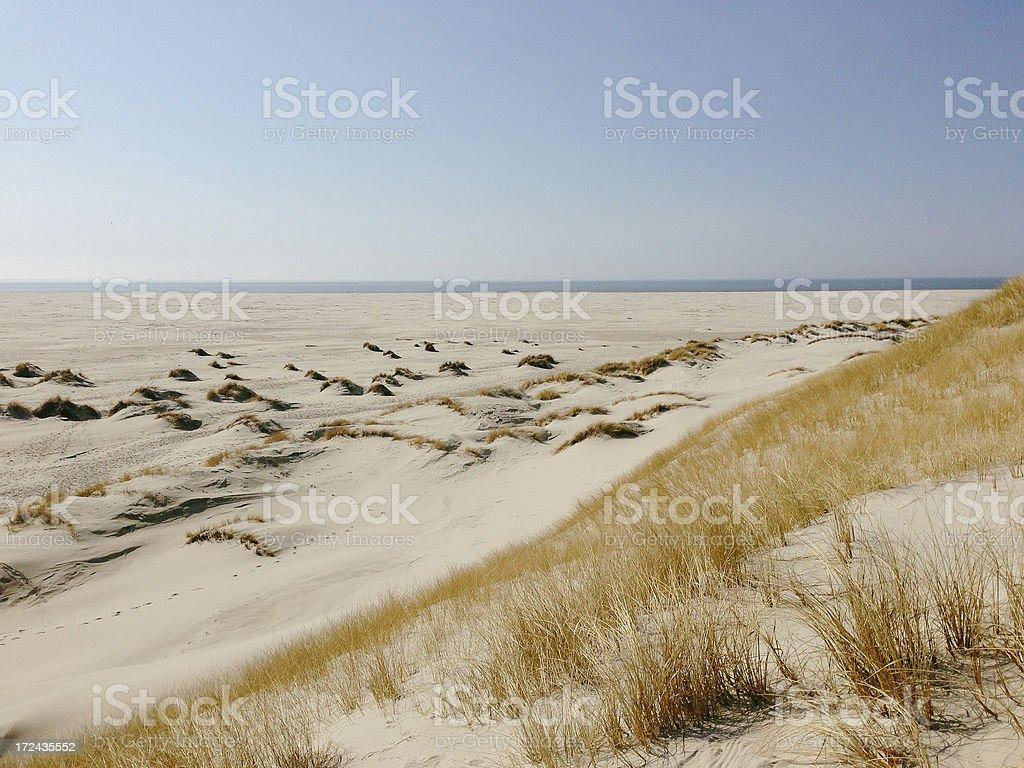 Dune Landscape royalty-free stock photo