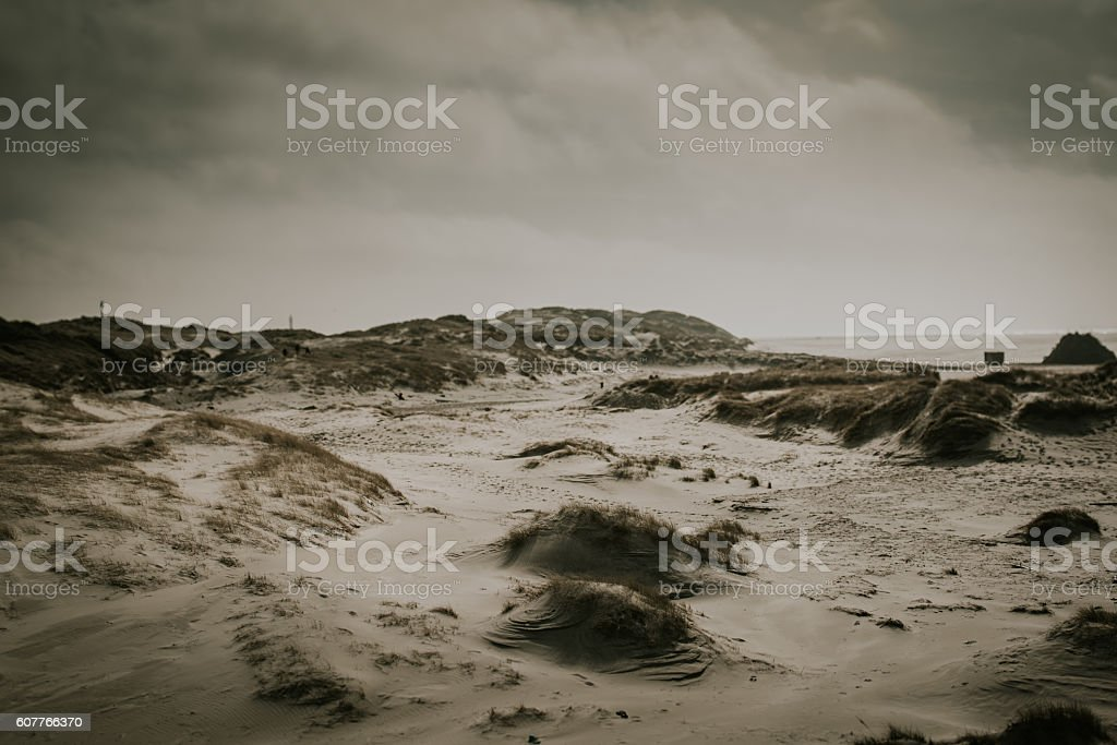 Dune landscape stock photo