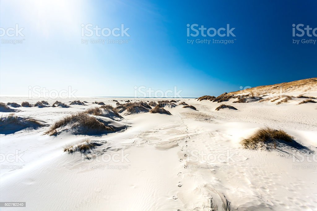 Dune Landscape with sunlight stock photo