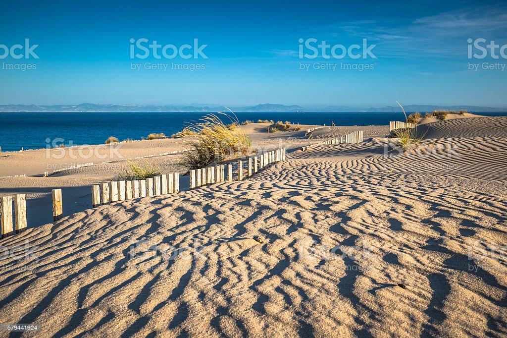 Dune of Punta Paloma, Tarifa, Andalusia, Spain stock photo