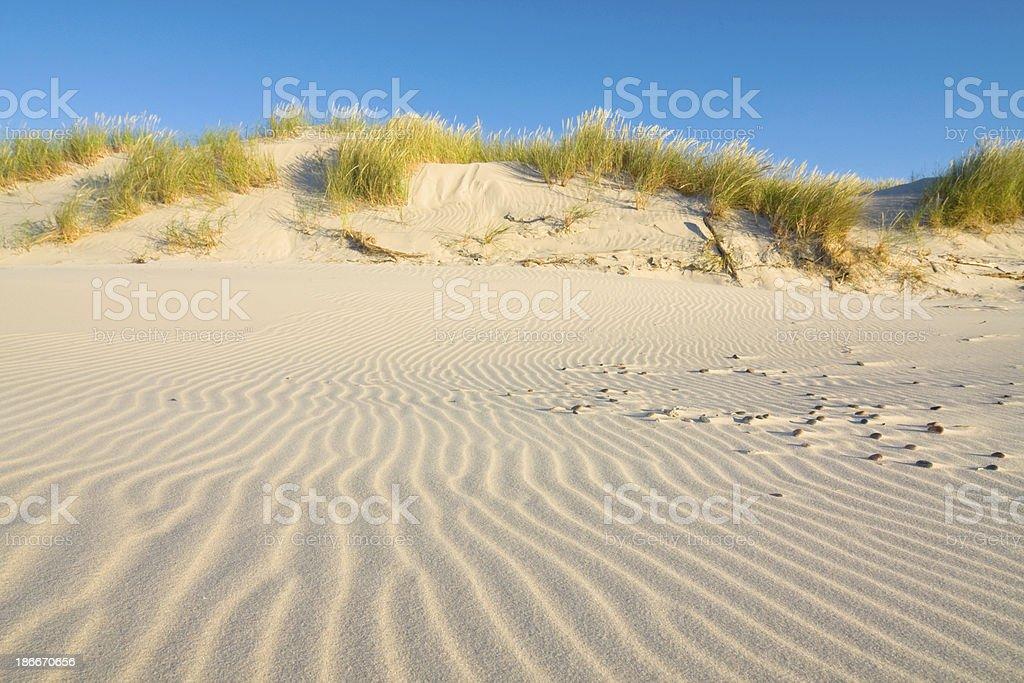 Dune on Beach at Sunset stock photo
