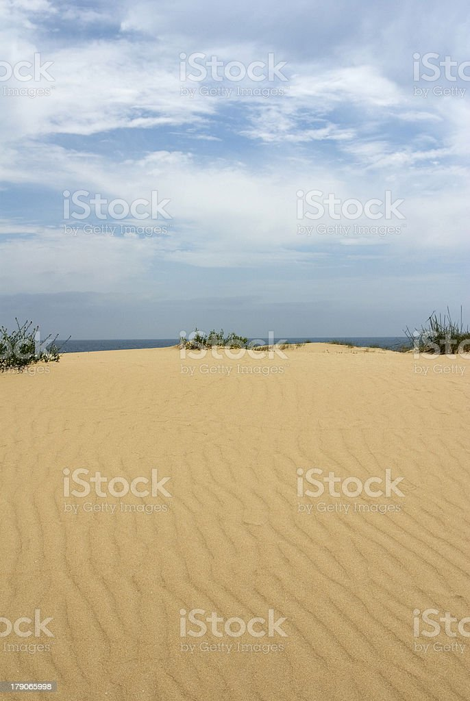 Duna en la playa. royalty-free stock photo