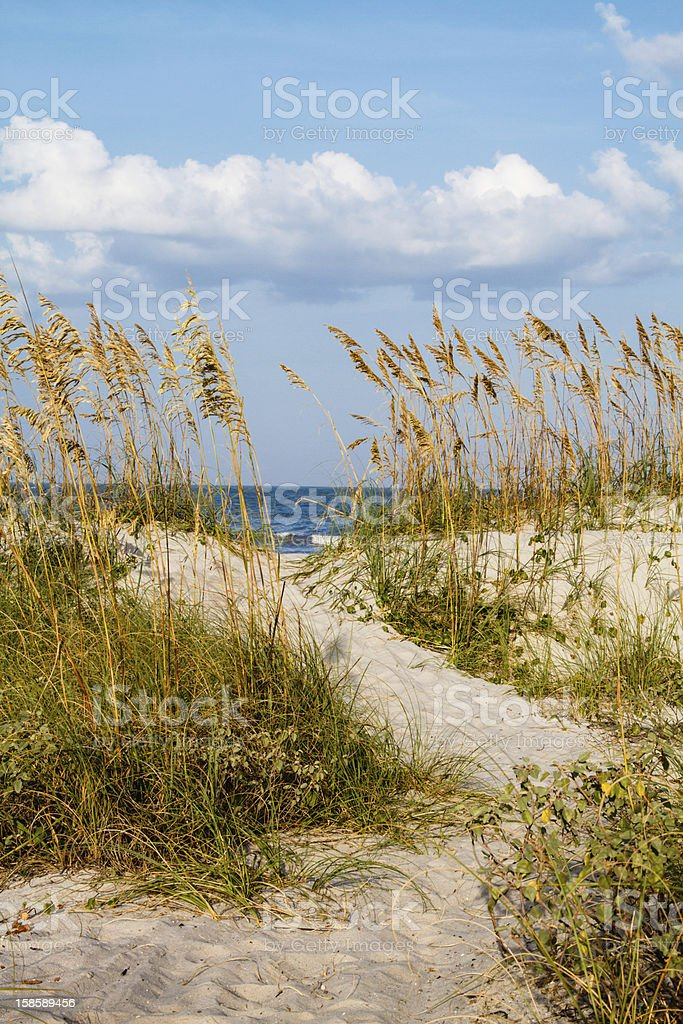 Dune Pathway to the Beach. stock photo